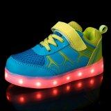 卸し売り最上質の最もよい価格LEDのスポーツはキャンバスの男の子および女の子の偶然靴の中国の工場に蹄鉄を打つ