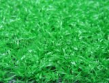 مجال عشب, [ور-رسستنس] [20مّ-50مّ] عشب اصطناعيّة