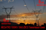 Megatro 1000kv 10A2-Zbc3 전송 탑