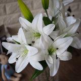 Fiore artificiale del giglio di tocco reale