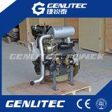 motore diesel raffreddato ad acqua del cilindro di 23HP Changchai 3 per il trattore