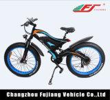 Bicicleta vendedora caliente fuerte de la grasa de 48V 500With750W E