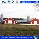 Vorfabriziertes große Überspannungs-Stahlkonstruktion-Gebäude für Werkstatt-Lager-Einkaufszentrum-Erscheinen-Raum-Geflügel-Halle