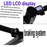 """Duas rodas que dobram o """"trotinette"""" elétrico com indicador do LCD"""