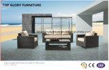屋外のテラスの家具の藤および庭のソファーセット(TG-804)