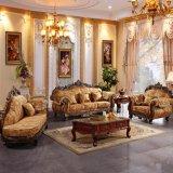 Sofá de la sala de estar con el vector lateral para los muebles caseros (D619D)