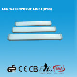 2FT IP66 LED wasserdichtes Licht mit GS-Cer (15W)