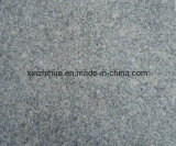 Granito grigio naturale G602 per la pavimentazione/il rivestimento/pavimentazione della parete