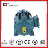 WS Asynchronous Electric Motor für Construction Machinery