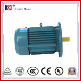 Yx3 Series 3 Phase Induction Motor elétrico de corrente alternada com Cyclo Reducer