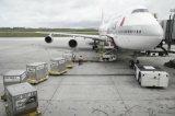 Servizio dell'aereo da trasporto dalla Cina a Bruxelles, Belgio