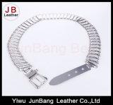 Cinghia del metallo Gold-Tone con la cinghia della catena a maglia di figura di foglio