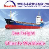Transporte da carga do mar de LCL/FCL de China a Hamburgo, Gremany