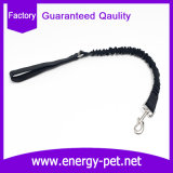 OEM明白で黒く強いナイロン物質的な犬の鎖