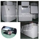 Caixa de armazenamento de congelação popular DC-380 do gelo para o armazenamento de gelo ensacado