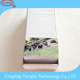 Sides 두 배 4color Printing Cr80 Inkjet Plastic PVC Card