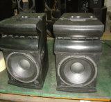 12 acoustique bidirectionnelle de pouce Professional/PRO (VX-932LA)