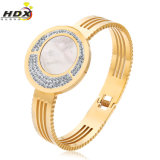 Stainless di qualità superiore Steel Bracelet, Diamond Bangles, Fashion Jewelry (hdx1008)