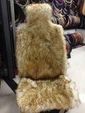La lana di inverno riempie gli ammortizzatori lunghi dei capelli delle stuoie dell'automobile