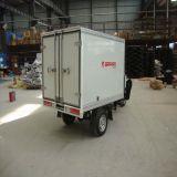 Nieuwe Benzine Drie de Gereden Cyclus van de Cabine met CCC Certificaat en de Grote Container van de Lading