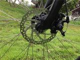 36V 250W Mittler-Motor, der Gebirgselektrisches Fahrrad für Freizeit fährt