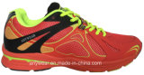[أثلتيك فووتور] [منس] [سبورتس] [جم] [رونّينغ شو] حذاء رياضة (815-5051)