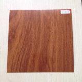 Farbe Coate Stahlring für Tür-Panel (SC-016)