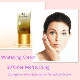 Composição de seda natural cosmética da essência da proteína para Whitening as épocas &10 de creme que hidratam o creme