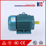 Yej-225m-4 220V/380V/660V motor de CA eléctrico de la inducción de 3 fases