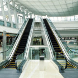 Ort-kommerzieller automatischer Passagier-Jobstepp-Wohnrolltreppe
