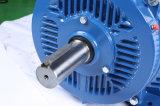 мотор индукции высокой эффективности кадра 80mm-355mm трехфазный с утверждением Ce