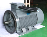 Tops Y Y2 Yjt Series Small Compressores AC Motor elétrico