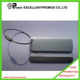 Рекламирующ бирку багажа верхнего качества напечатанную логосом изготовленный на заказ (EP-L8298)