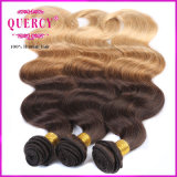 Zubehör Top Quality Grade 8A Three Tone Color Omber Hair Virgin brasilianisches Hair brasilianisches Virgin Hair