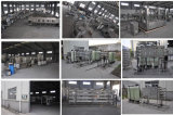 máquina mineral do tratamento da água 5000L/H