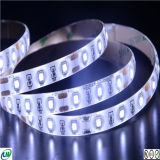 Luz de tira del CRI 90 LED 2835 60LEDs con Ce&RoHS
