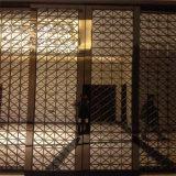 Het Scherm van het Roestvrij staal van Singapore van de Verdeler van de Zaal riep het Comité van de Muur in het leven toenam de Gouden Mat van de Kleur eindigt