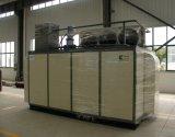 Compresor de CNG para la estación de la hija (cilindro doble)