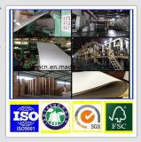 Papel Offset/de papel/madeira de impressão preço de papel livre melhor