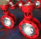 ANSI/ASTM Gear Operated Flanged Butterfly Valve (150LB--300LB)
