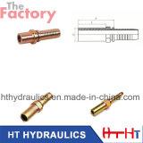 SAE/Bsp /BSPT hydraulisches Schlauch-Schlauch-Befestigung hydraulisches passendes &Flange (50011)