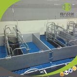 Оборудование фермы свиньи для кровати хавроньи порося