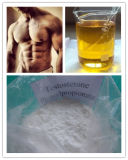 Essai cristallin blanc Phenylpropionate 99%Min de Phenylpropionate de testostérone de poudre