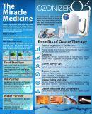 400mg/H de Lucht van de Generator van het Ozon van de afstandsbediening en de Zuiveringsinstallatie van het Water voor Groenten en Fruit