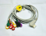 DMS Holter Cable 10 Leads ECG Cable