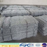 Hot Sale Galvanized Gabion Mesh (XA-GM6)