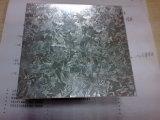 Steel galvanisé Coil avec Dx51d Z180