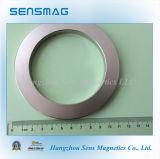 De Permanente Magneet van uitstekende kwaliteit van de Ring van de Magneet van NdFeB van het Neodymium