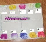 Alta qualità del circuito di collegamento naturale delle piante artificiali con i fiori Westeria Gu-SL-130-840-45blue