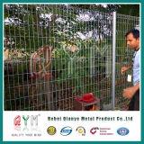 Cerca revestida del acoplamiento de alambre del sistema Brc Rolltop de la cerca del acoplamiento del PVC Brc